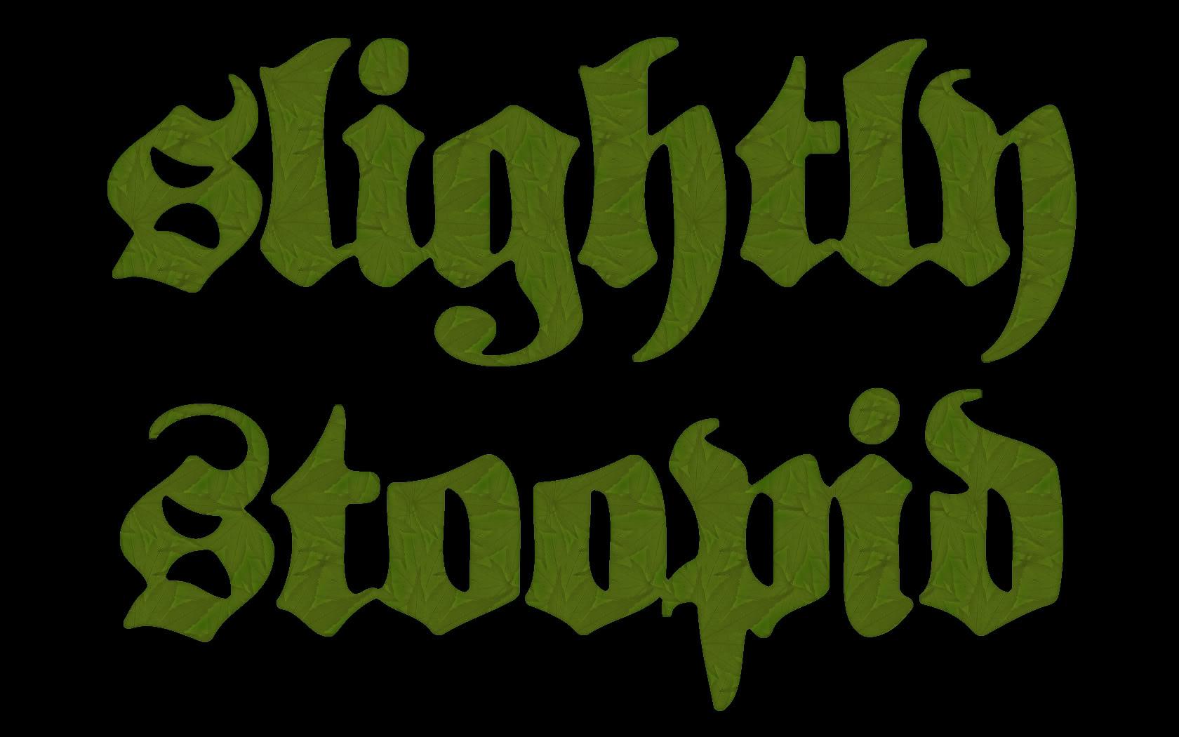 Interview: Slightly Stoopid - The Pop Break