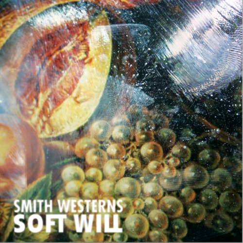 sw_softwill_large